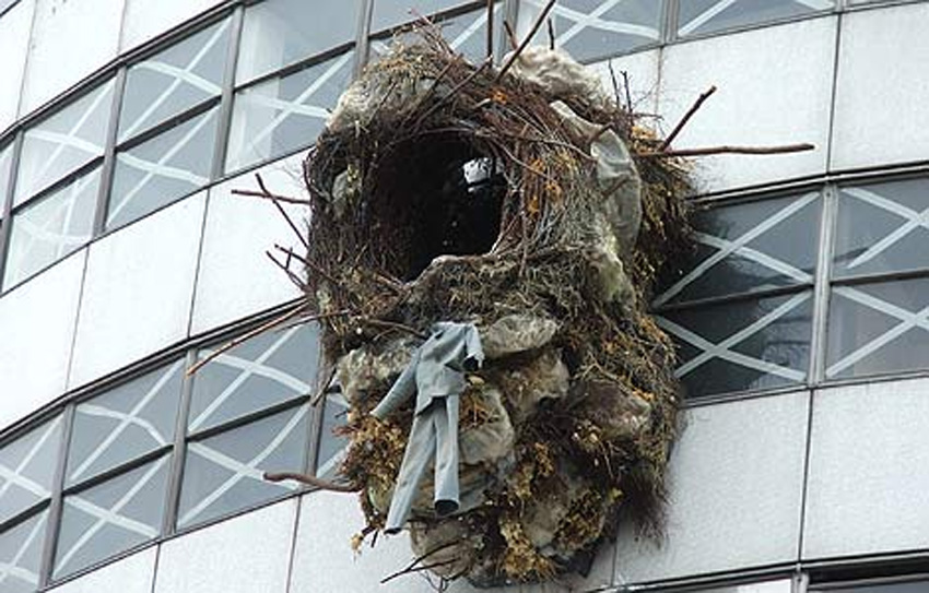 The nest, Rotunda